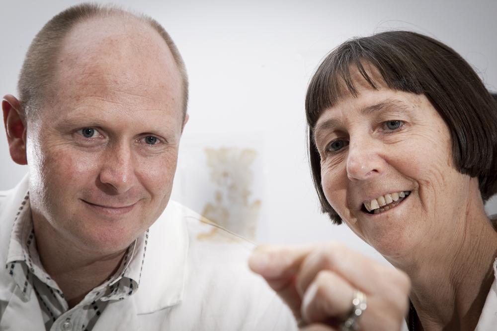 Auckland Uni Brain clinic | CatWalk Trust
